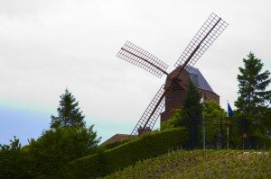 Windmolen in Verzenay, eigendom van Mumm