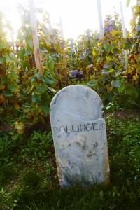 Markeersteen bij Bollinger in Aÿ.